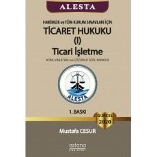 Alesta Ticaret Hukuku, Ticari İşletme